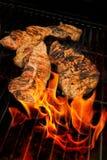 Carnes do BBQ imagem de stock