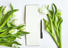 Carnet à dessins et tulipes blanches sur le fond blanc Videz le carnet ouvert avec l'endroit pour le texte Vue supérieure, config photographie stock libre de droits