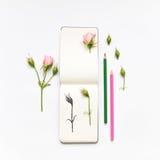 Carnet à dessins, roses et crayons colorés Illustration botanique d'une rose Configuration plate, vue supérieure Photo stock