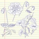 Carnet avec le liseron et les fleurs Photographie stock