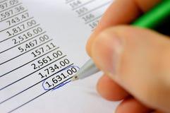 Carnet di assegni Immagine Stock
