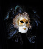 Carneval mask Royalty Free Stock Image
