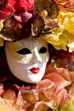 Carneval mask. In Venice Italy royalty free stock images