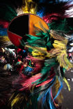 Carnevale Brasile di festival di boi di meu di Bumba Fotografia Stock Libera da Diritti