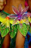 Vestito dal ballerino della samba Fotografia Stock Libera da Diritti