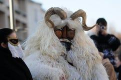Carnevale di Kaposvar Immagine Stock Libera da Diritti