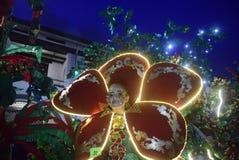 Carnevale 2017 di notte di Samarang Fotografia Stock Libera da Diritti