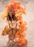 Carnevale di Rio Immagine Stock