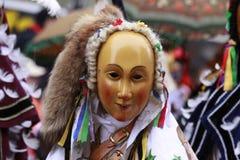 Carnevale di Rottweiler Fotografie Stock