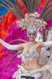 Carnevale 2014 di Santa Cruz de Tenerife Immagine Stock Libera da Diritti