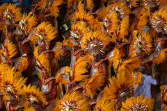 Carnevale a Rio Fotografia Stock Libera da Diritti