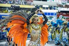 Carnevale 2014 - Rio de Janeiro Immagini Stock Libere da Diritti