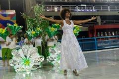 Carnevale Santa Cruz 2019 fotografie stock libere da diritti
