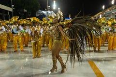 Carnevale Santa Cruz 2019 immagine stock libera da diritti