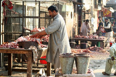 Carniceiro Imagem de Stock