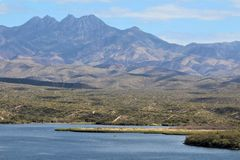 Carniceiro Jones Beach Arizona, floresta nacional de Tonto foto de stock royalty free