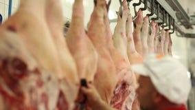 Carnicería entre bastidores almacen de video