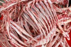 Carnicero animal esquelético Fotografía de archivo libre de regalías
