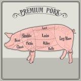 Carnicero Pig Imagen de archivo