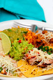 Carnitas Taco Meal Stock Image