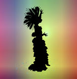 Carnival 1. Silhouette of woman in carnival costume on colourful background Stock Photos