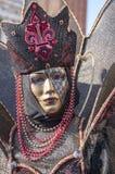 Carnival-2013 vénitien Images libres de droits