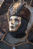 Carnival-2013 vénitien Photo libre de droits