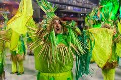 Carnival 2019 Alegria da Zona Sul royalty free stock images
