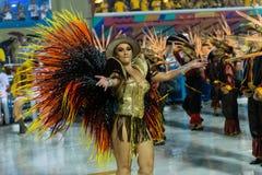 Carnival 2019 Alegria da Zona Sul stock images