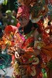 Carnival costum Royalty Free Stock Photo