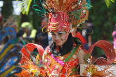Carnival costum Royalty Free Stock Photography