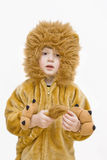Carnival costume-lion. Royalty Free Stock Image