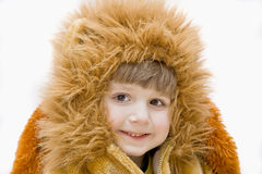 Carnival costume-lion. Stock Photos