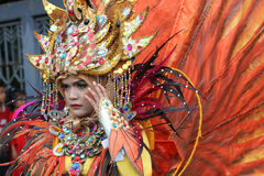 Carnival costumes Royalty Free Stock Photos