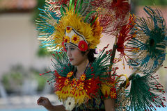 Carnival costumes Royalty Free Stock Image