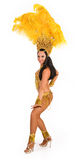 Carnival dancer Royalty Free Stock Photos