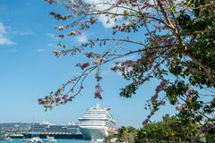 Carnival Dream och Holland America Nieuw Statendam kryssningskepp som anslutas i Jamaica arkivfoton