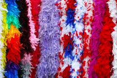 Carnival feathers Stock Image