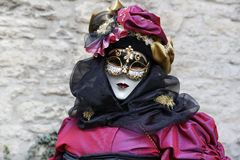 Carnival Festival - Hallia VENEZIA Stock Photos