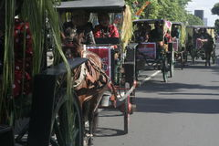 Carnival Horse Carriage In Sukoharjo Royalty Free Stock Photo