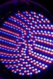 Carnival lights royalty free stock photo