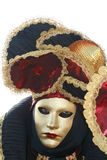 Carnival mask. Carnival of Venice, Italy: Person wearing beautiful mask and costum Royalty Free Stock Image