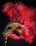Carnival mask. Golden carnival mask with red feathers Stock Photography