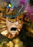 Carnival mask. Mask of the Carnival with suffering grimace Royalty Free Stock Photos