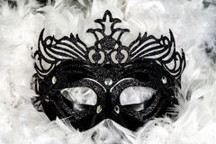 Carnival mask. Black carnival mask on a background of white feathers Royalty Free Stock Photo