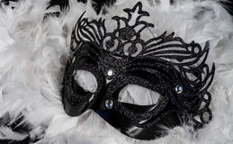 Carnival mask. Black carnival mask on a background of white feathers Royalty Free Stock Image