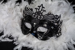 Carnival mask. Black carnival mask on a background of white feathers Stock Photo