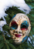 Carnival mask on a Christmas tree. In winter forest Stock Images