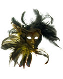 Carnival mask with feathers Royalty Free Stock Photo