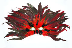 Carnival mask from feathers Stock Photography
